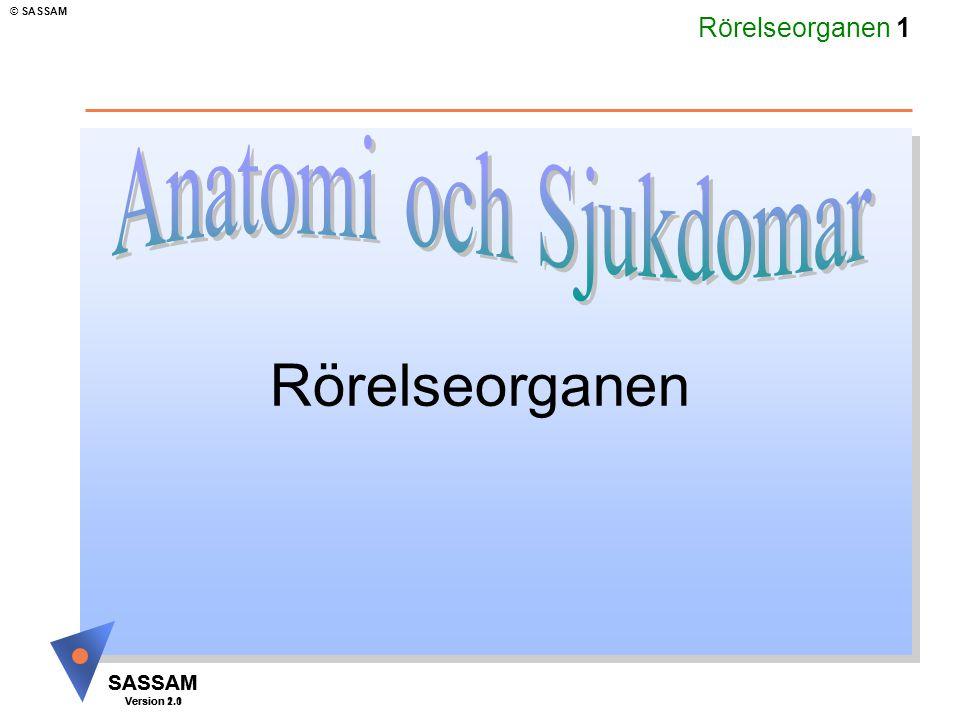 Rörelseorganen 1 SASSAM Version 1.1 © SASSAM SASSAM Version 2.0 Rörelseorganen