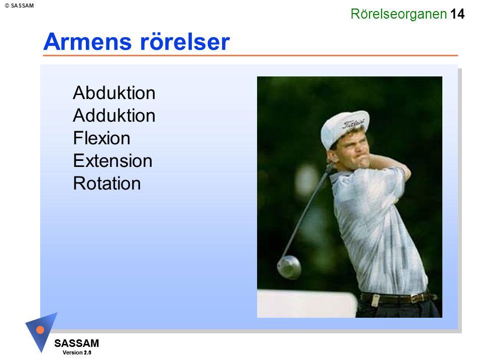 Rörelseorganen 14 SASSAM Version 1.1 © SASSAM SASSAM Version 2.0 Armens rörelser Abduktion Adduktion Flexion Extension Rotation