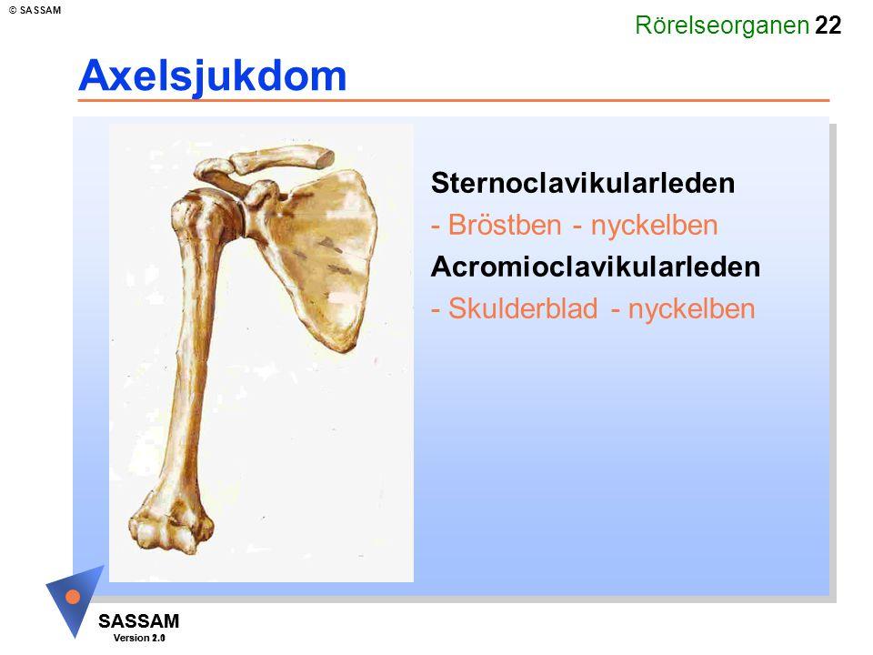 Rörelseorganen 22 SASSAM Version 1.1 © SASSAM SASSAM Version 2.0 Axelsjukdom Sternoclavikularleden - Bröstben - nyckelben Acromioclavikularleden - Sku
