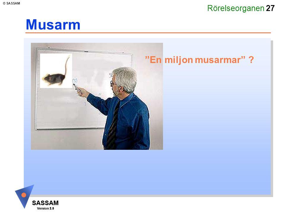 """Rörelseorganen 27 SASSAM Version 1.1 © SASSAM SASSAM Version 2.0 Musarm """"En miljon musarmar"""" ?"""