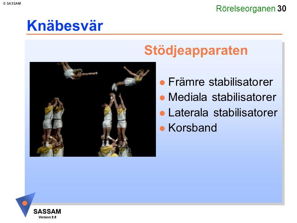 Rörelseorganen 30 SASSAM Version 1.1 © SASSAM SASSAM Version 2.0 Knäbesvär Stödjeapparaten l Främre stabilisatorer l Mediala stabilisatorer l Laterala