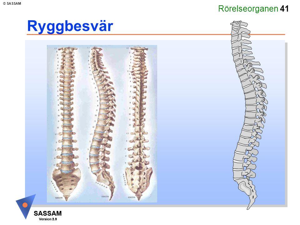 Rörelseorganen 41 SASSAM Version 1.1 © SASSAM SASSAM Version 2.0 Ryggbesvär