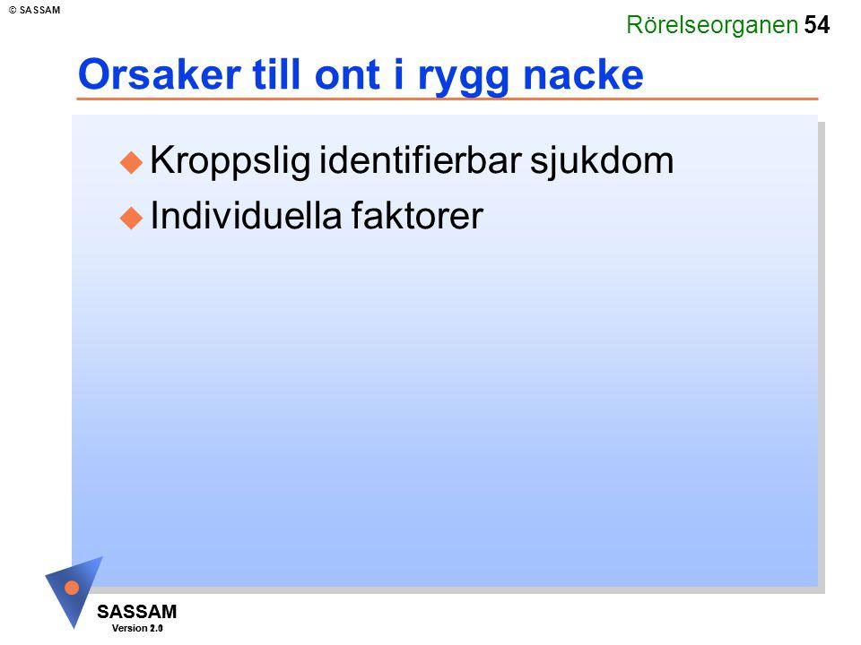 Rörelseorganen 54 SASSAM Version 1.1 © SASSAM SASSAM Version 2.0 Orsaker till ont i rygg nacke u Kroppslig identifierbar sjukdom u Individuella faktor