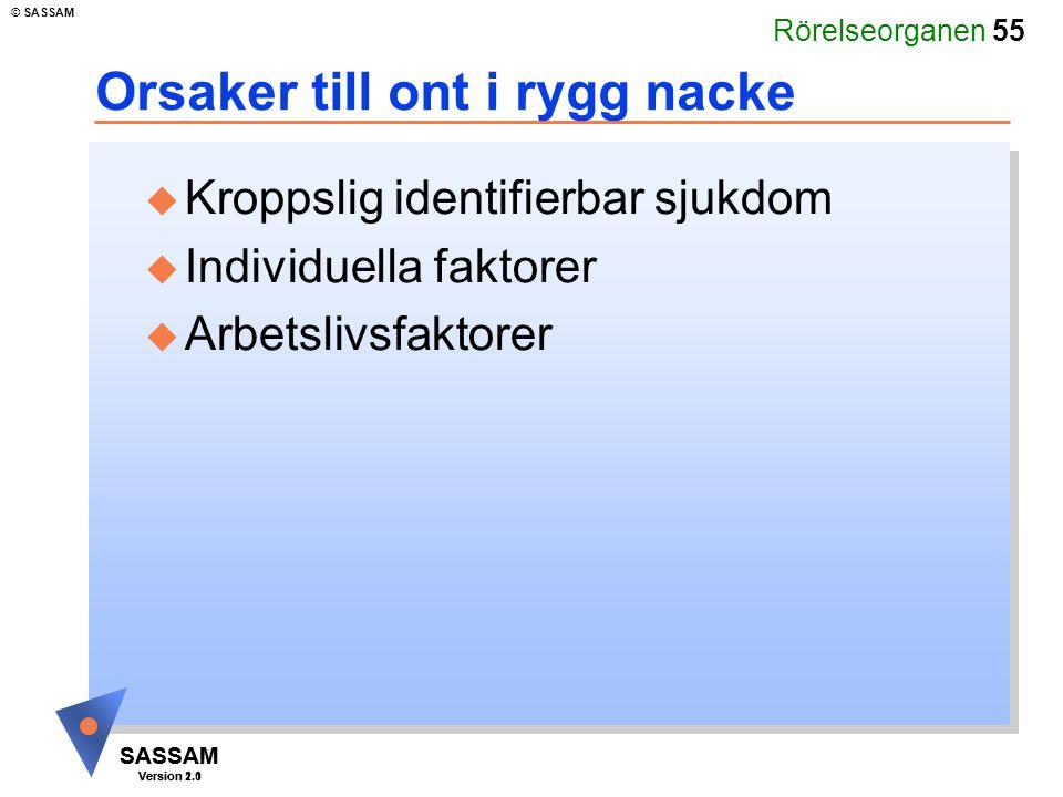 Rörelseorganen 55 SASSAM Version 1.1 © SASSAM SASSAM Version 2.0 Orsaker till ont i rygg nacke u Kroppslig identifierbar sjukdom u Individuella faktor