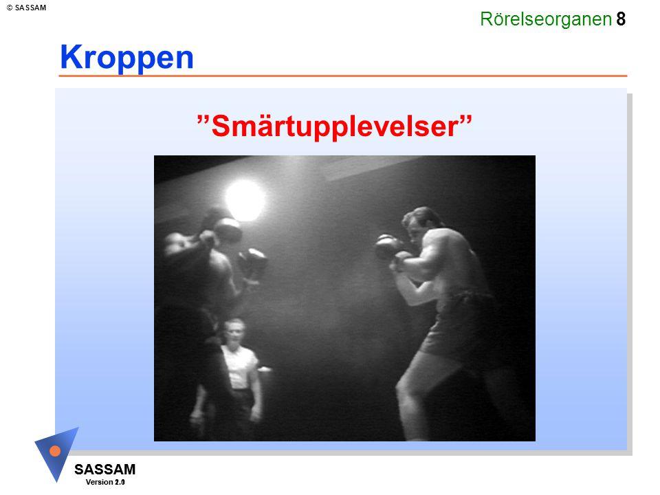 """Rörelseorganen 8 SASSAM Version 1.1 © SASSAM SASSAM Version 2.0 Kroppen """"Smärtupplevelser"""""""