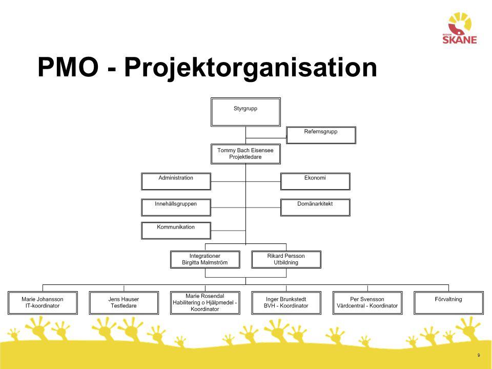 9 PMO - Projektorganisation