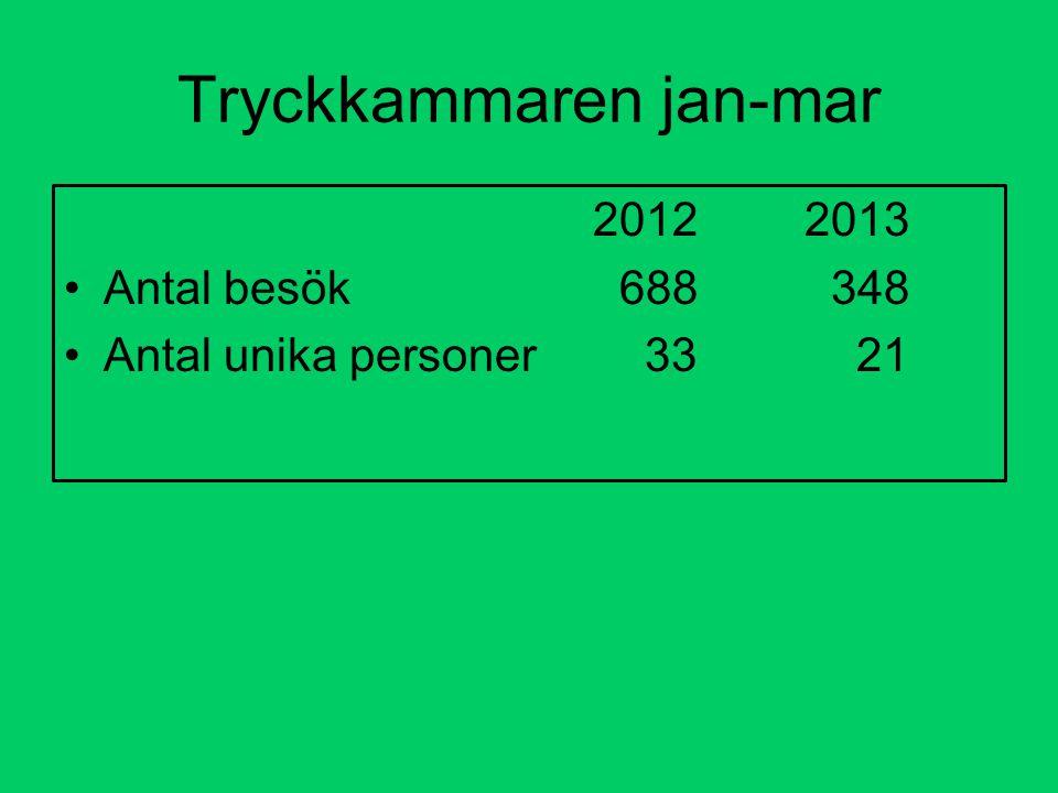 Tryckkammaren jan-mar 20122013 Antal besök 688 348 Antal unika personer 33 21