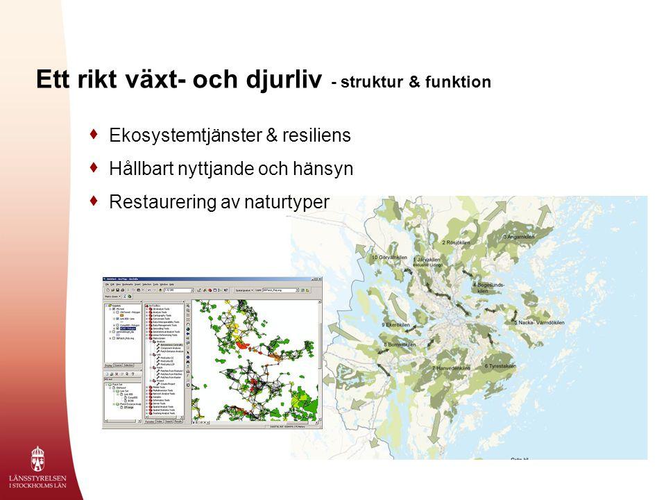 Ett rikt växt- och djurliv - struktur & funktion  Ekosystemtjänster & resiliens  Hållbart nyttjande och hänsyn  Restaurering av naturtyper