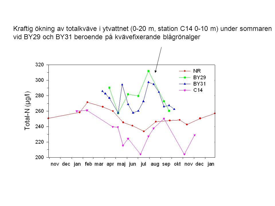 Kraftig ökning av totalkväve i ytvattnet (0-20 m, station C14 0-10 m) under sommaren vid BY29 och BY31 beroende på kvävefixerande blågrönalger