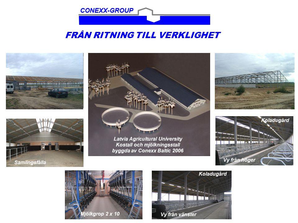 Conexx Dairy Plan Growing process from 108  to 216  to 432 milkingcows Kostall (108) Mjölkningsstall 108 mjölkkor 28,3 x 43,2 m 14,32 x 38,4 m 216 mjölkkor 1.
