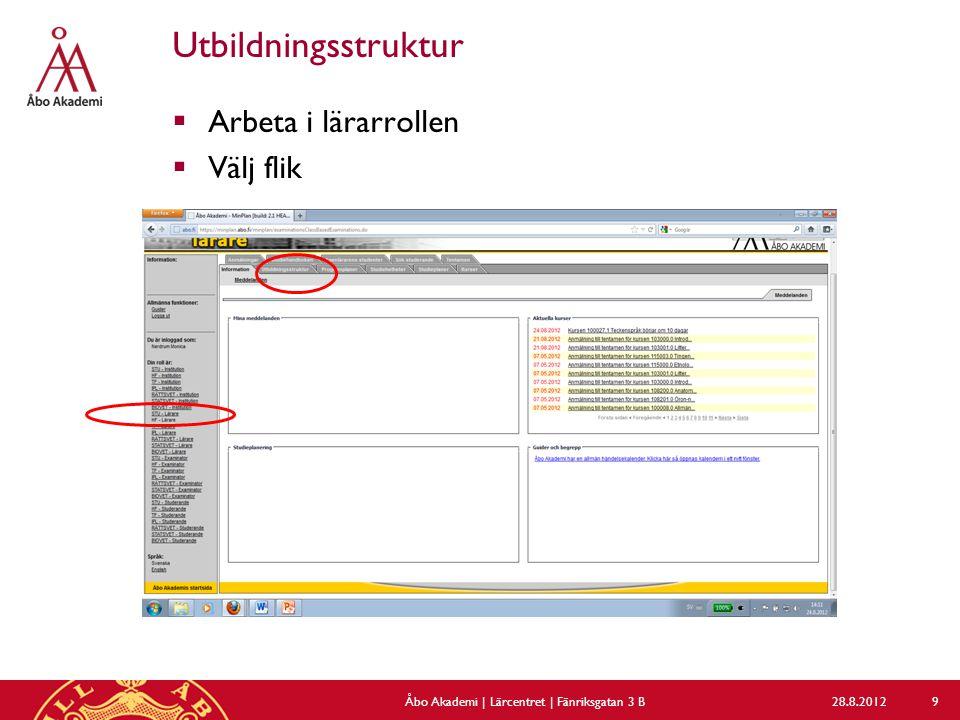 Utbildningsstruktur  Arbeta i lärarrollen  Välj flik 28.8.2012Åbo Akademi | Lärcentret | Fänriksgatan 3 B 9