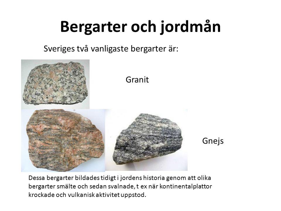 Bergarter och jordmån Granit Gnejs Sveriges två vanligaste bergarter är: Dessa bergarter bildades tidigt i jordens historia genom att olika bergarter smälte och sedan svalnade, t ex när kontinentalplattor krockade och vulkanisk aktivitet uppstod.