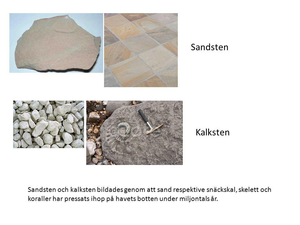 Sandsten Kalksten Sandsten och kalksten bildades genom att sand respektive snäckskal, skelett och koraller har pressats ihop på havets botten under miljontals år.