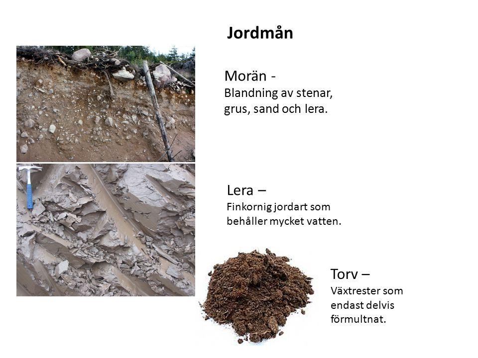 Morän - Blandning av stenar, grus, sand och lera. Lera – Finkornig jordart som behåller mycket vatten. Jordmån Torv – Växtrester som endast delvis för