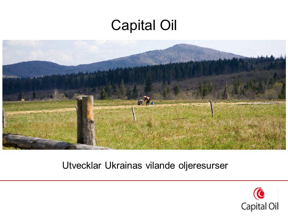 Capital Oil Utvecklar Ukrainas vilande oljeresurser