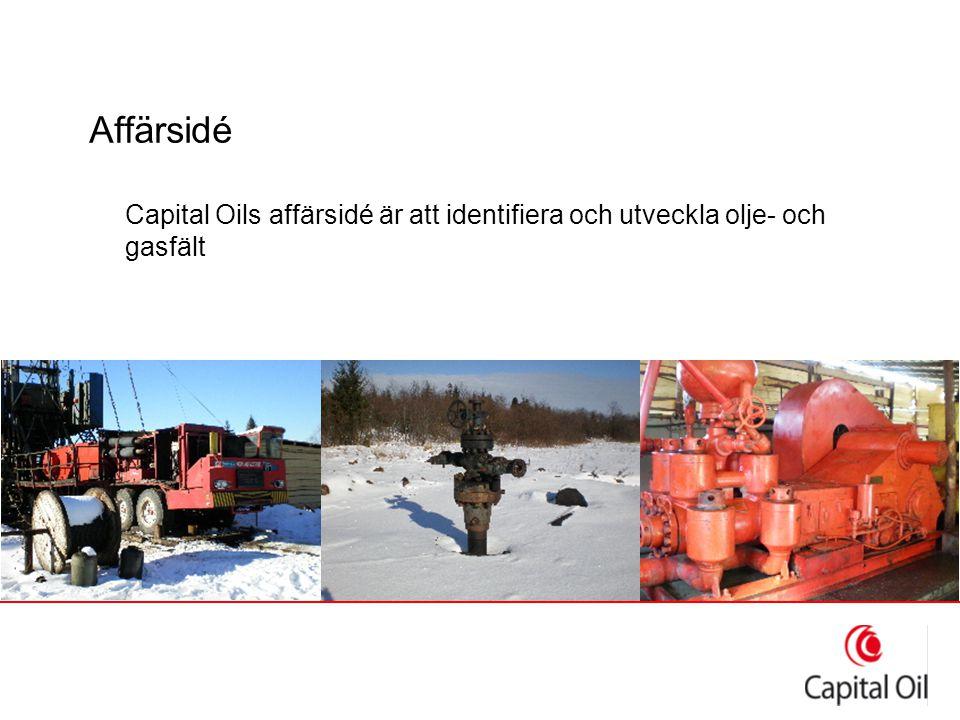 Affärsidé Capital Oils affärsidé är att identifiera och utveckla olje- och gasfält