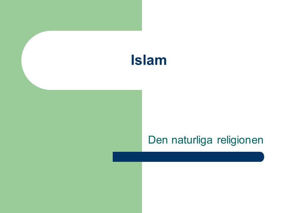 Islam Det finns ingen Gud utom Gud, och Muhammed är hans sändebud Islam – Salam= fred Koranen har hög status Religion och vardagsliv= ett – Muslim är man från vaggan till graven 24 timmar om dygnet