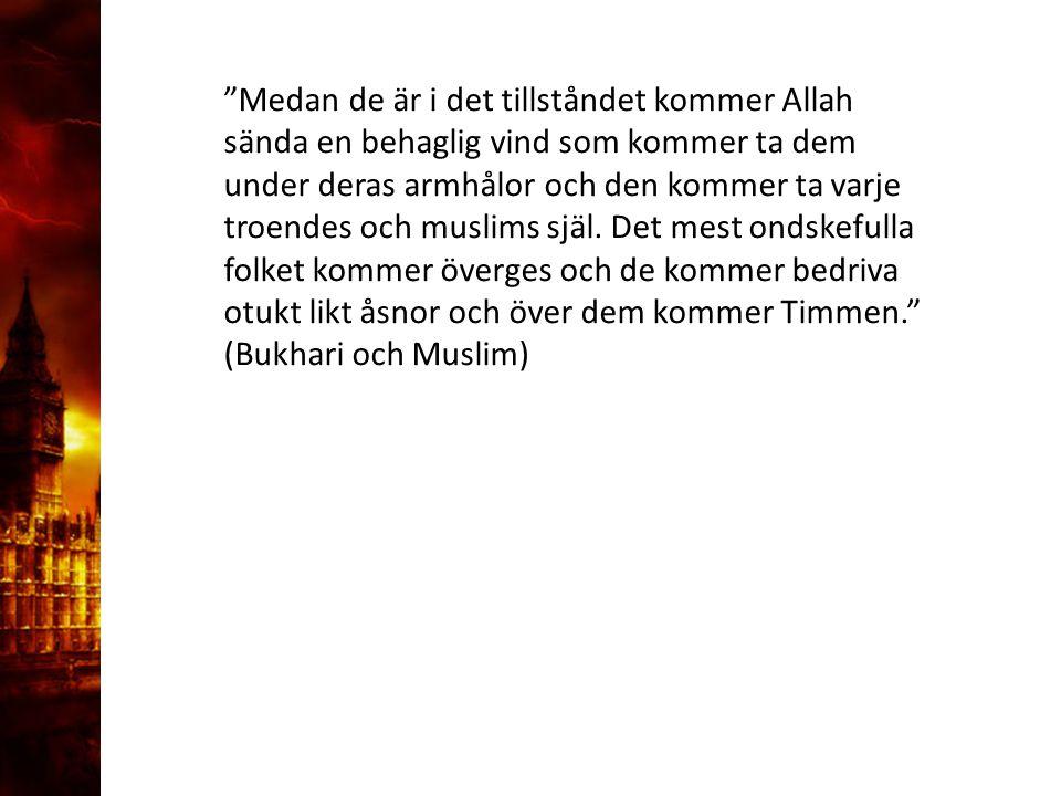 """3. Delandet av månen """"Medan de är i det tillståndet kommer Allah sända en behaglig vind som kommer ta dem under deras armhålor och den kommer ta varje"""
