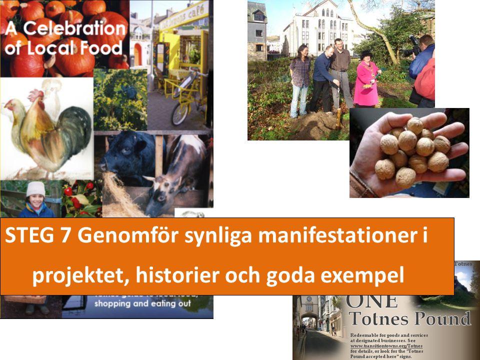 STEG 7 Genomför synliga manifestationer i projektet, historier och goda exempel