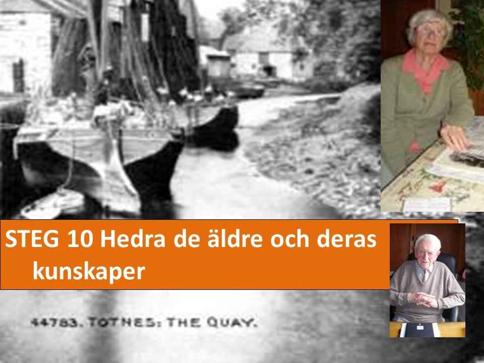 STEG 10 Hedra de äldre och deras kunskaper
