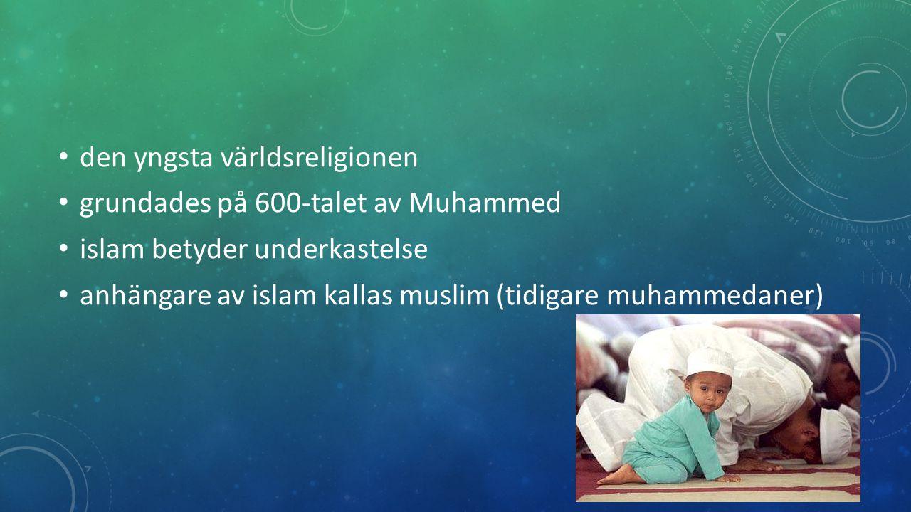 Gud har uppenbarat sig för människorna genom flera profeter och sändebud: -Abraham -Moses -Jesus -Muhammed Muhammed är den största och den sista profeten.
