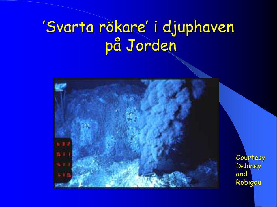 'Svarta rökare' i djuphaven på Jorden Courtesy Delaney and Robigou