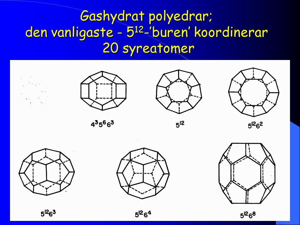 Gashydrat polyedrar; den vanligaste - 5 12 -'buren' koordinerar 20 syreatomer