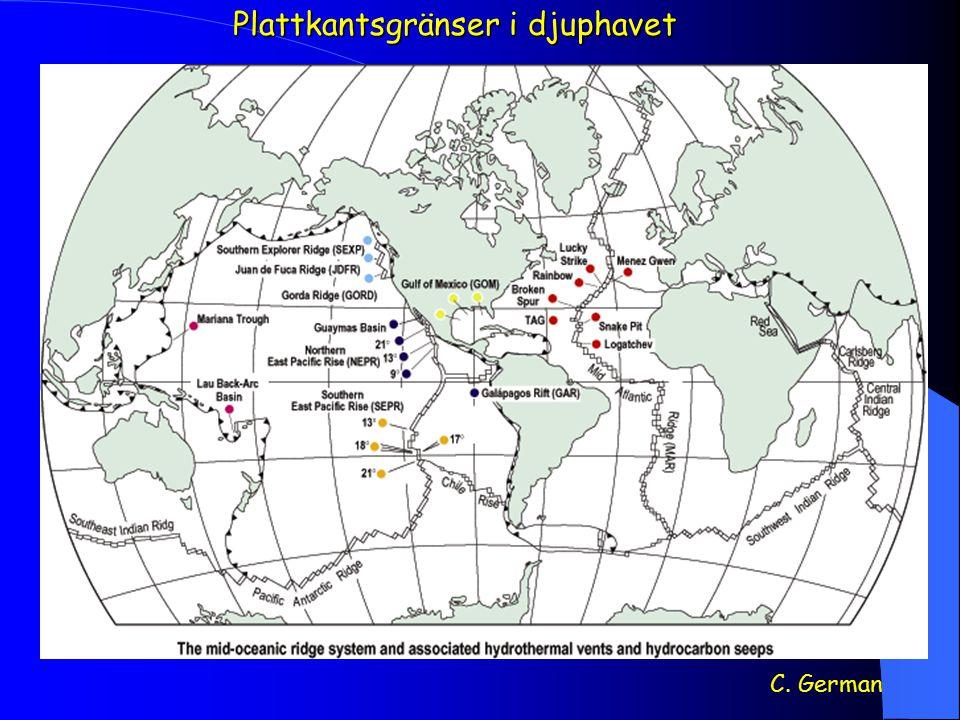 Den vätgasdrivna 'djupbiosfären' Pedersen, 2000