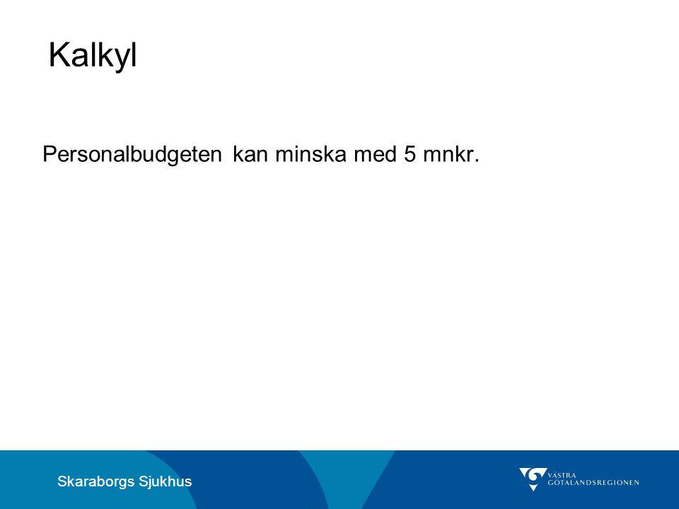 Skaraborgs Sjukhus Kalkyl Personalbudgeten kan minska med 5 mnkr.