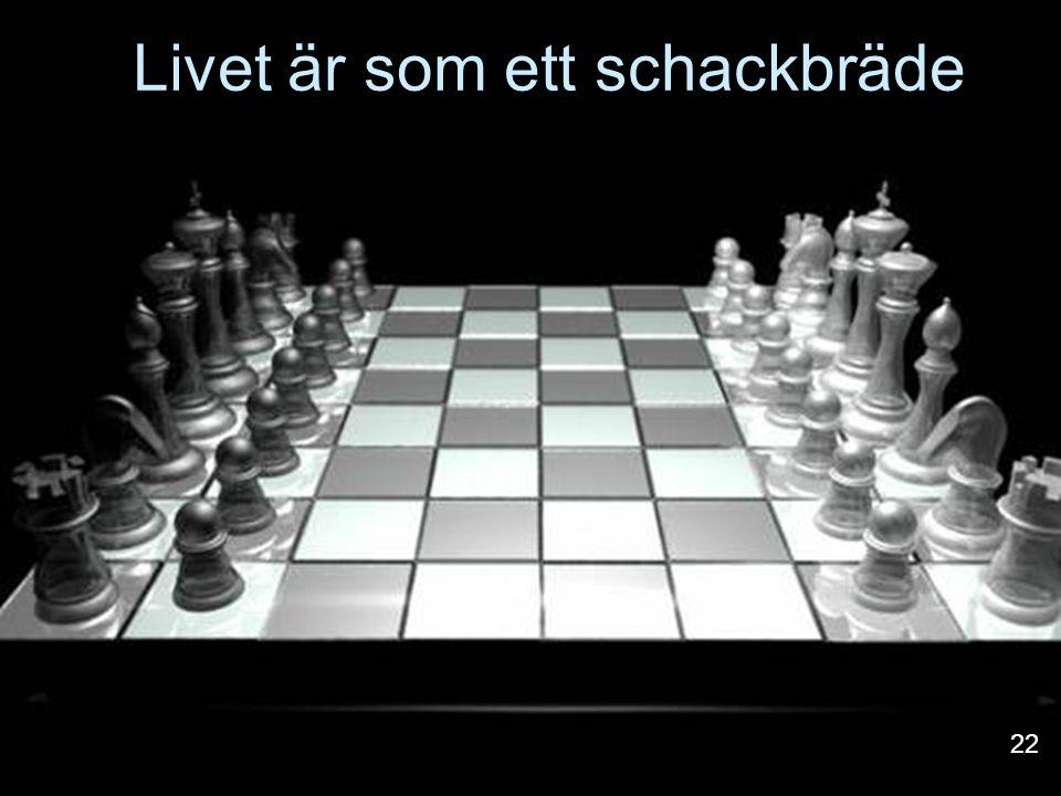 Livet är som ett schackbräde 22