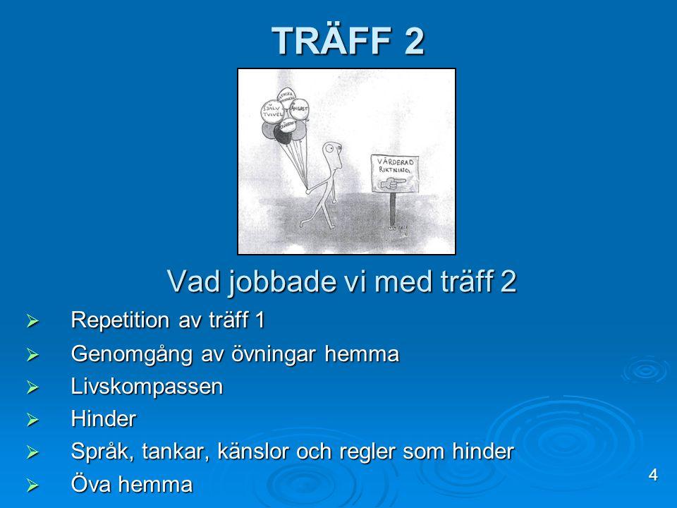 TRÄFF 2 4 Vad jobbade vi med träff 2  Repetition av träff 1  Genomgång av övningar hemma  Livskompassen  Hinder  Språk, tankar, känslor och regle