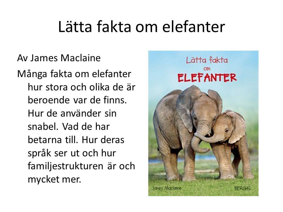 Lätta fakta om elefanter Av James Maclaine Många fakta om elefanter hur stora och olika de är beroende var de finns. Hur de använder sin snabel. Vad d