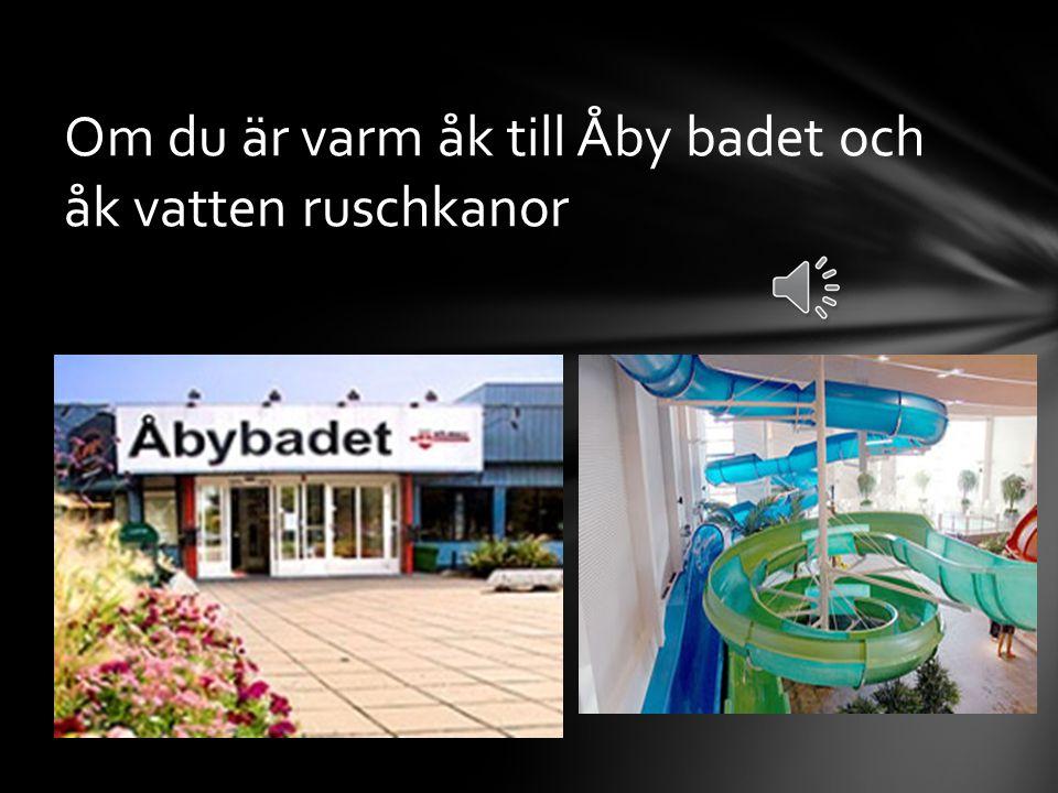 VÄSTERGÖTLAND Ta en tur till Liseberg i Göteborg och åk Atmosfear och alla roliga attraktioner!