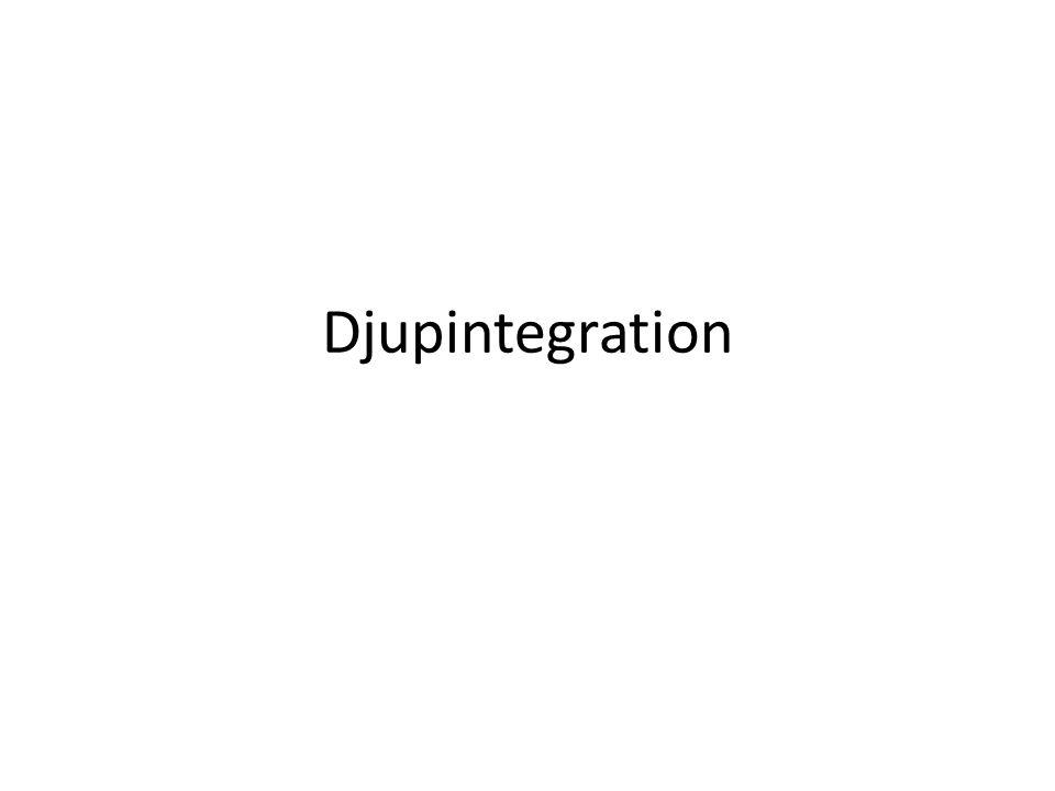Djupintegration