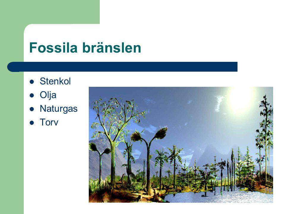 Fossila bränslen Stenkol Olja Naturgas Torv