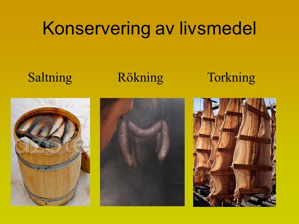 Konservering av livsmedel SaltningRökningTorkning