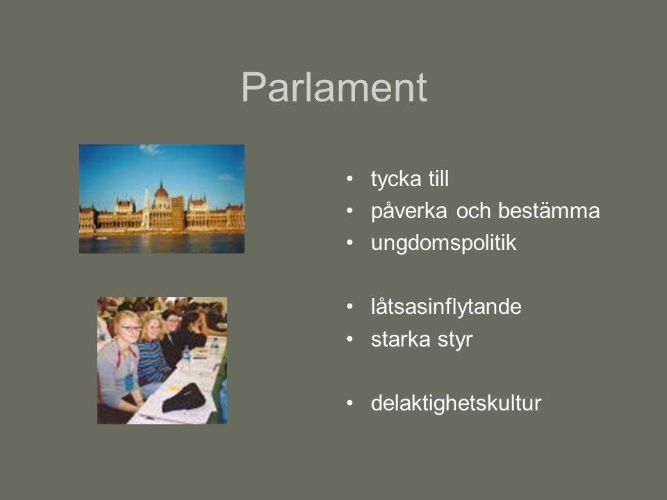 Parlament tycka till påverka och bestämma ungdomspolitik låtsasinflytande starka styr delaktighetskultur