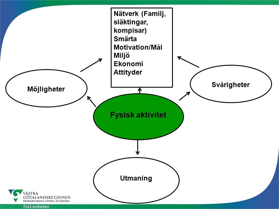 Fysisk aktivitet Utmaning Svårigheter Möjligheter Nätverk (Familj, släktingar, kompisar) Smärta Motivation/Mål Miljö Ekonomi Attityder