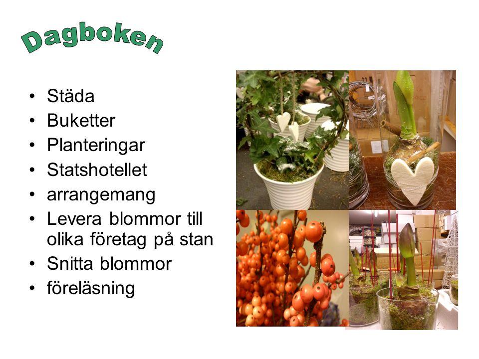 Städa Buketter Planteringar Statshotellet arrangemang Levera blommor till olika företag på stan Snitta blommor föreläsning