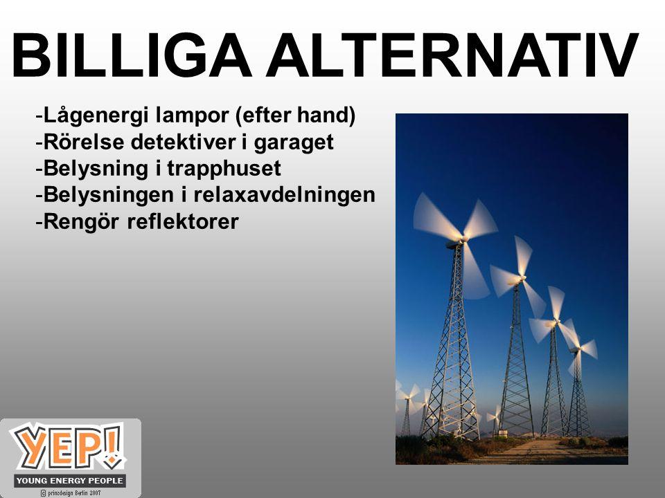 BILLIGA ALTERNATIV -Lågenergi lampor (efter hand) -Rörelse detektiver i garaget -Belysning i trapphuset -Belysningen i relaxavdelningen -Rengör reflektorer