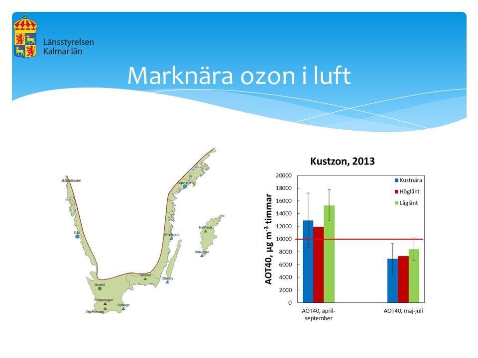 Marknära ozon i luft