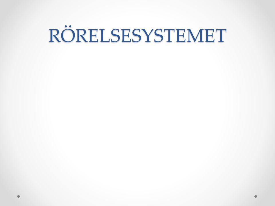 RÖRELSESYSTEMET