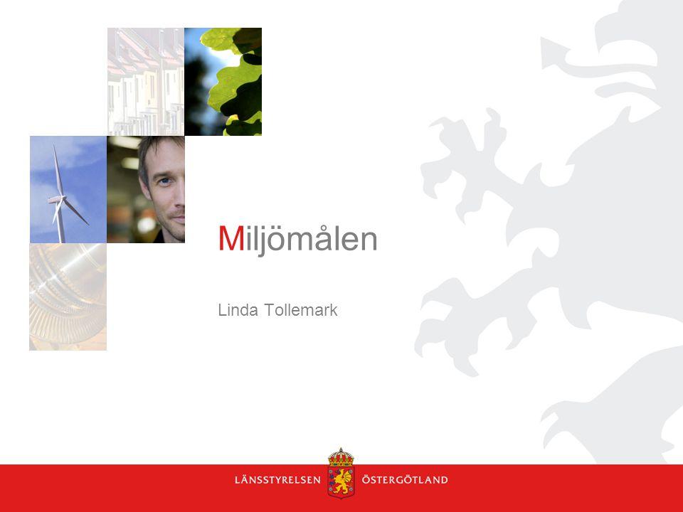 Miljömålen Linda Tollemark