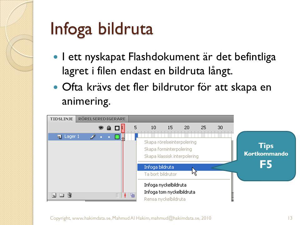 Infoga bildruta I ett nyskapat Flashdokument är det befintliga lagret i filen endast en bildruta långt.