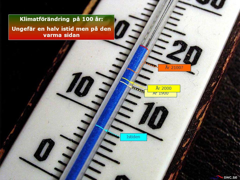Istiden År 1900 År 2100? År 2000 Klimatförändring på 100 år: Ungefär en halv istid men på den varma sidan