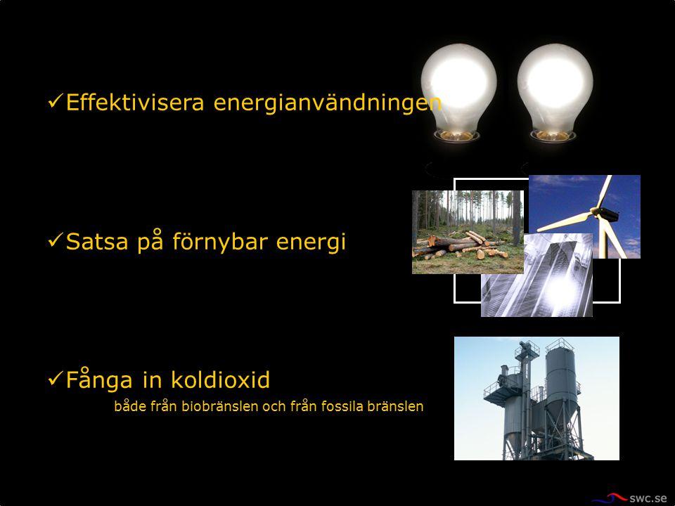 Effektivisera energianvändningen Satsa på förnybar energi Fånga in koldioxid både från biobränslen och från fossila bränslen