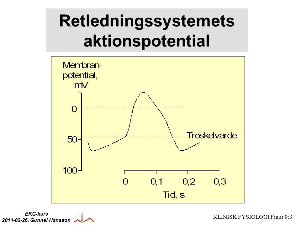 EKG-kurs 2014-02-26, Gunnel Hansson KLINISK FYSIOLOGI Figur 9:3 Retledningssystemets aktionspotential