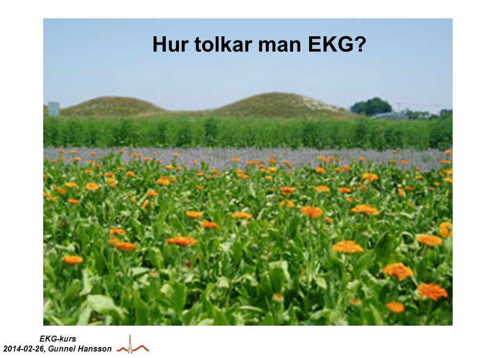 EKG-kurs 2014-02-26, Gunnel Hansson Hur tolkar man EKG?