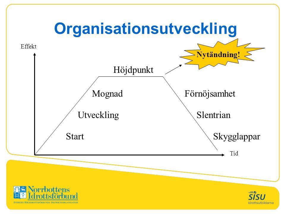 Effekt Tid Höjdpunkt Mognad Utveckling Start Förnöjsamhet Slentrian Skygglappar Nytändning! Organisationsutveckling
