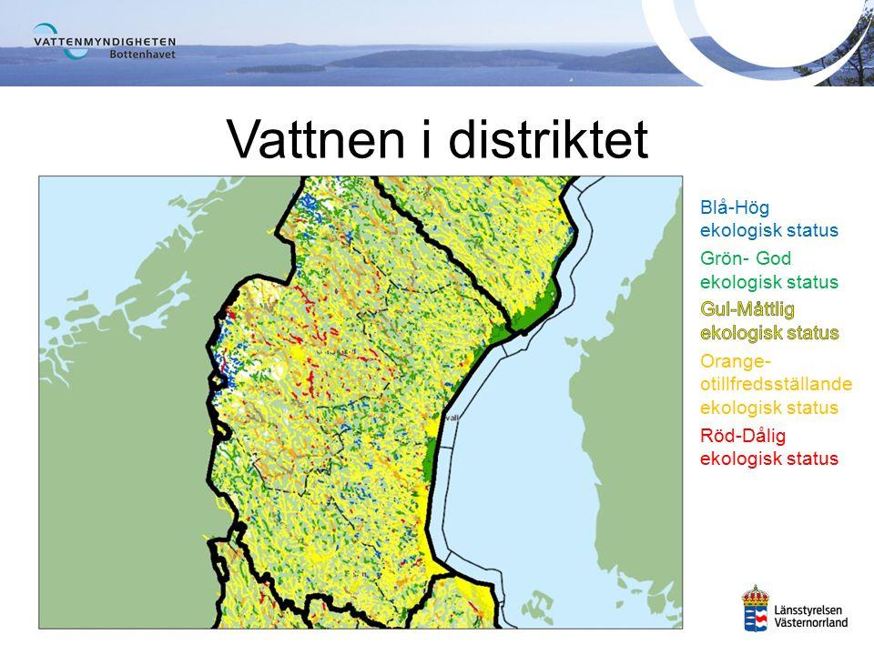 Värna ett naturligt växt- och djurliv i våra vatten Säkerställa tillgången på rent vatten för dricksvattenproduktion Ramdirektivet för vatten